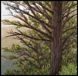 Distant View with Pine